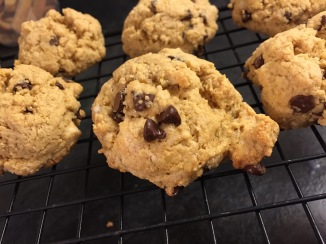 Butterless Chocolate Chip Cookie
