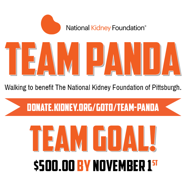 Team Panda - National Kidney Walk