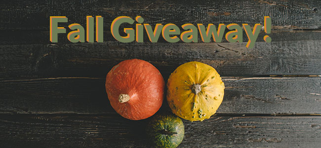 Fall Giveaway | TSetzler Designs